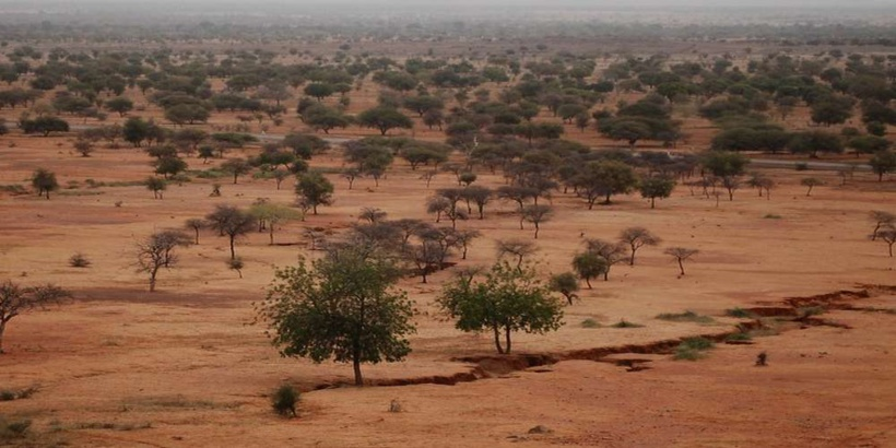 Sahel. ©Center For International Forestry Research/Daniel Tiveau