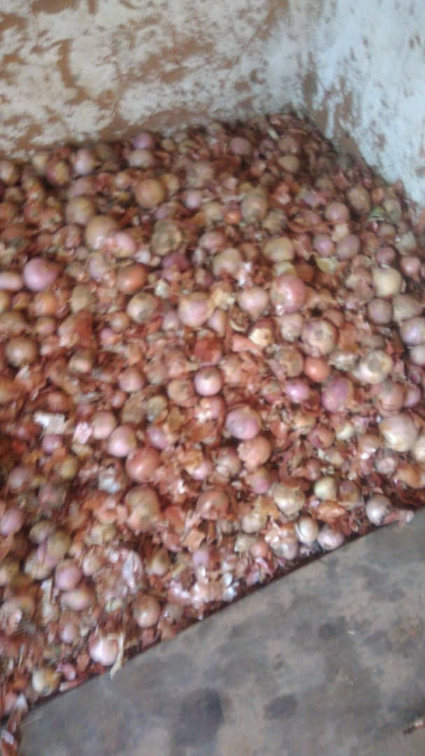 Cameroun : Le prix du sac d'oignons à 120.000 FCFA
