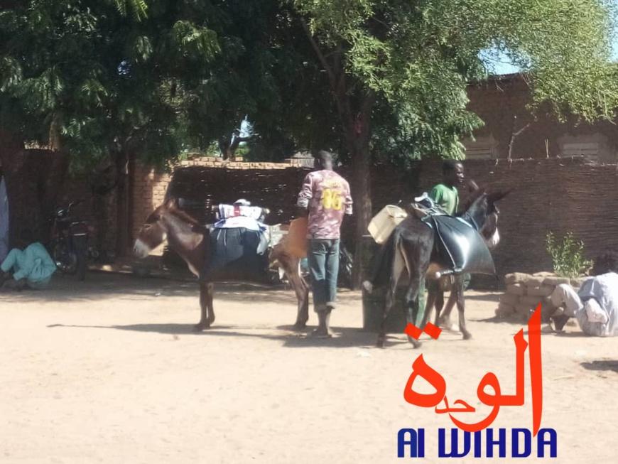Tchad : retour aux sources pour certains avec l'état d'urgence. © Alwihda Info