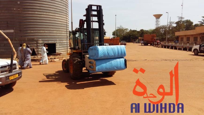 Tchad : lancement de la commercialisation du coton à l'usine Pala 2