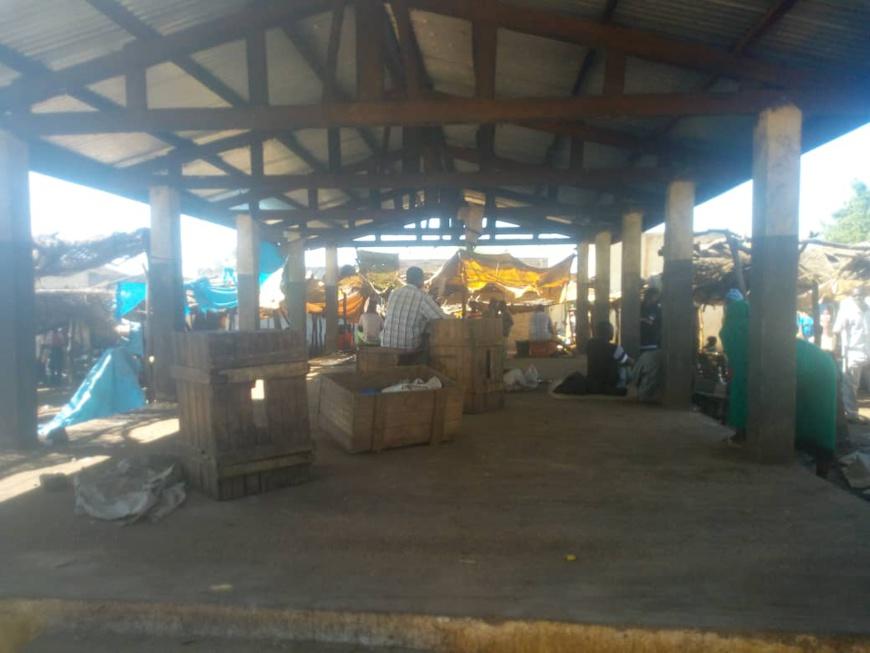 Tchad : grève des vendeurs de poisson à Pala