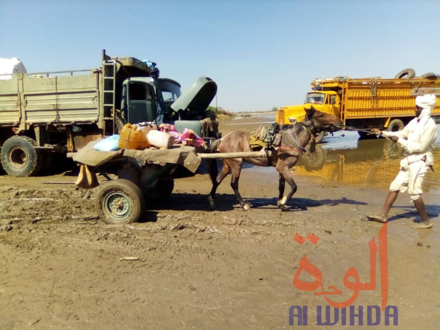 Tchad : à Koukou Angarana, l'activité économique fait oublier l'état d'urgence