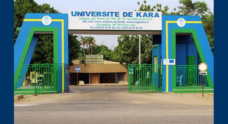 L'Université de Kara a mis au point une technique pour protéger les mangues greffées des insectes nuisibles. © DR
