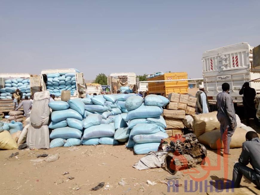 Tchad : à l'Est, le sésame s'exporte jusqu'au Soudan. © Alwihda Info