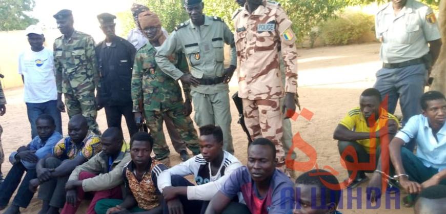 Tchad : un trafiquant de personnes et six jeunes arrêtés au Sud-ouest. © Foka Mapagne/Alwihda Info