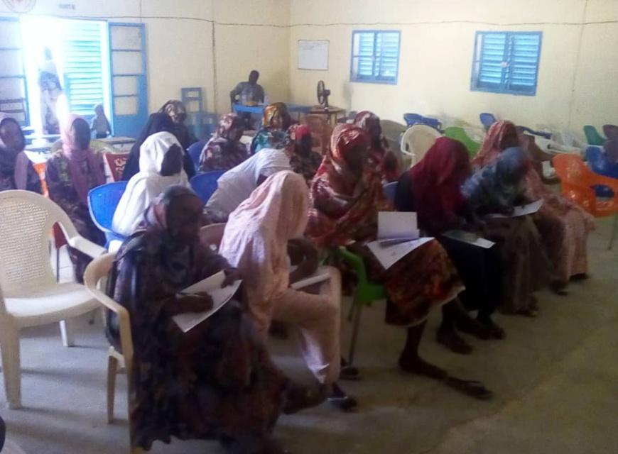 Tchad : le FONAP lance une formation en technique de culture maraîchère à Am-Timan. © Mahamat Abdelbanat Kourma/Alwihda Info