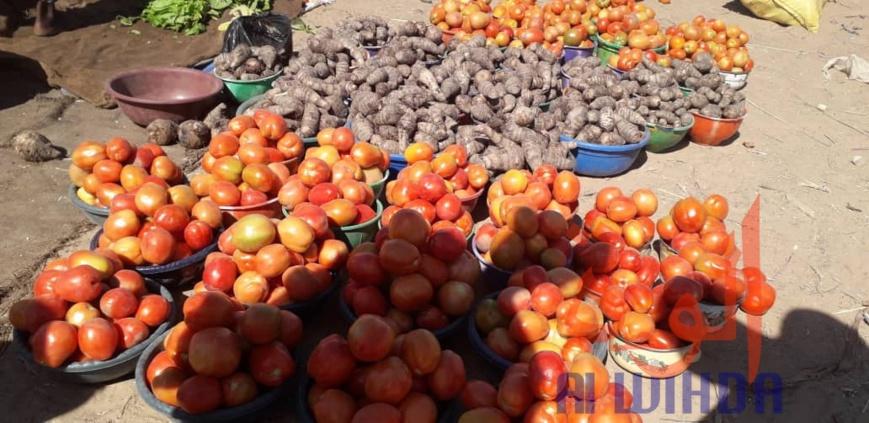 Tchad : Linia, un véritable axe commercial en manque de modernité. © Djibrine Haïdar/Alwihda Info