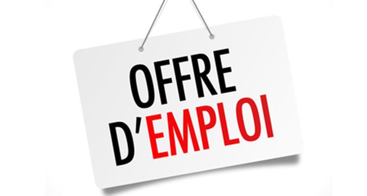 Tchad : offre de recrutement d'un ou une chargé(e) des affaires commerciales