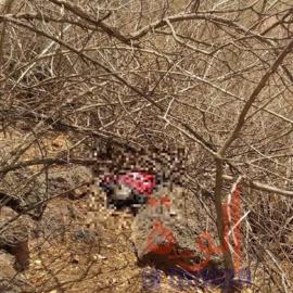 Un homme âgé retrouvé mort sur une colline, non loin du village Djabalène au Sila, le 25 mai 2020. © Mahamat Issa Gadaya/Alwihda Info