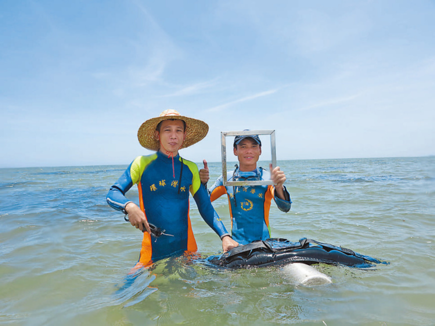 Researchers of the institute restore seagrass meadows. (Photo courtesy of an institute of marine ecology under Hainan Academy of Ocean and Fisheries Sciences)