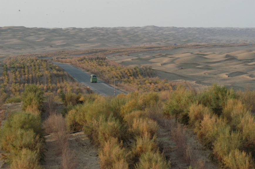 Photo shows the shelter forest project that protects the highway from the desert. (People's Daily Online)