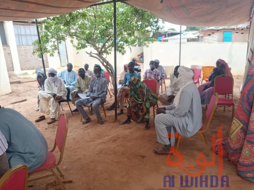 Tchad : au Sila, 1529 porteurs de projets bénéficient d'un financement de l'ONAPE