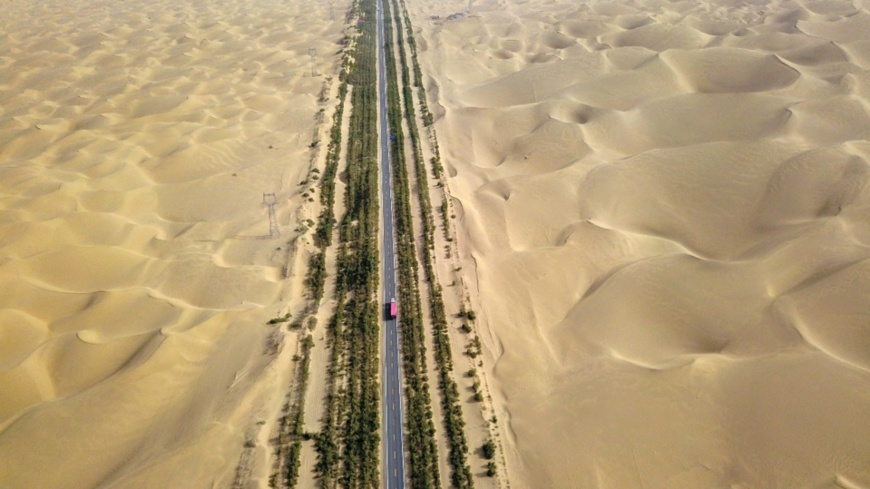 Photo shows the shelter forest along the Tarim Desert Highway. The shelter forest prevents desertification, improves local environment, and ensures smooth transportation. (People's Daily Online)
