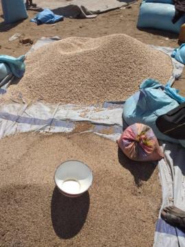 Le marché de Goz Beida, au Sila. © Mahamat Issa Gadaya/Alwihda Info