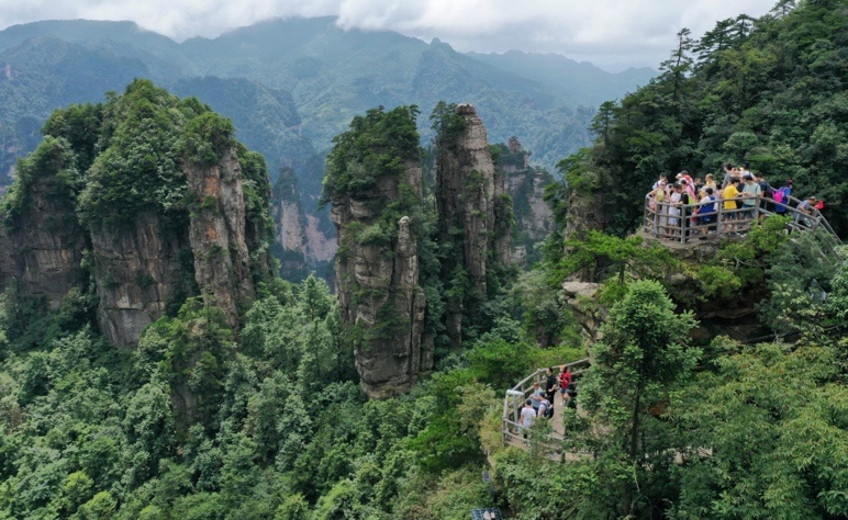 Tourists visit Zhangjiajie scenic spot, Central China's Hunan Province on Aug. 10. Photo by Wu Yongbing/People's Daily Online