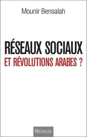 Ouvrage sur les révolutions arabes : Parole de cyberactiviste