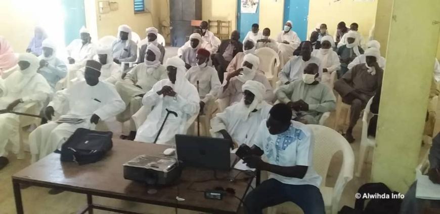 Tchad : renforcer la productivité d'exploitations agropastorales, un atelier d'évaluation à Ati