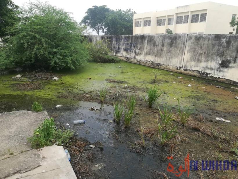Tchad : l'Université de N'Djamena face à l'insalubrité, aux eaux usées et dégradations