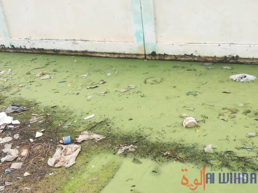 Tchad : l'Université de N'Djamena face à l'insalubrité, aux eaux usées et dégradations. © Ali Moussa/Alwihda Info