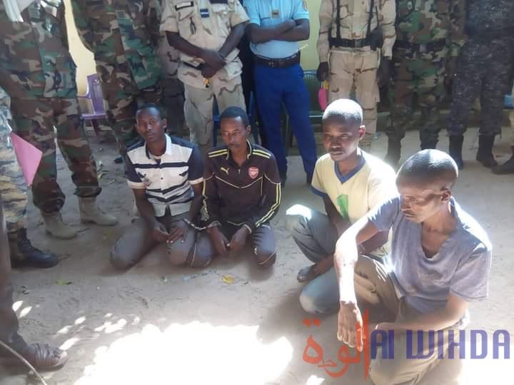 Tchad : la gendarmerie arrête quatre présumés malfrats au Mandoul. © Alwihda Info