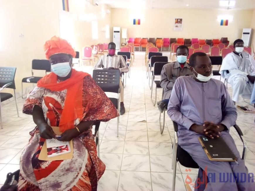 Tchad : des comités d'actions évaluent l'amélioration des moyens d'existence à l'Ouest. © Mbainaissem Gédéon Mbeïbadoum/Alwihda Info