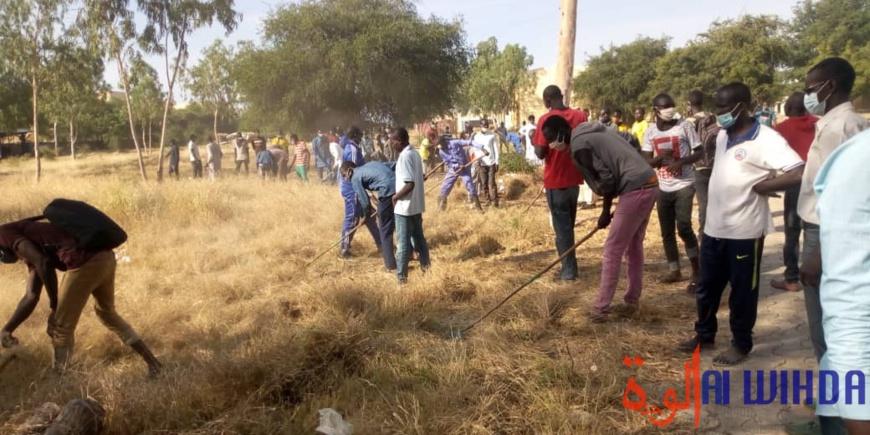 Tchad : une journée citoyenne de salubrité à l'Université polytechnique de Mongo