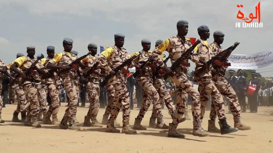 Tchad : les militaires qui deviennent des éleveurs sommés d'arrêter ou de déposer la tenue