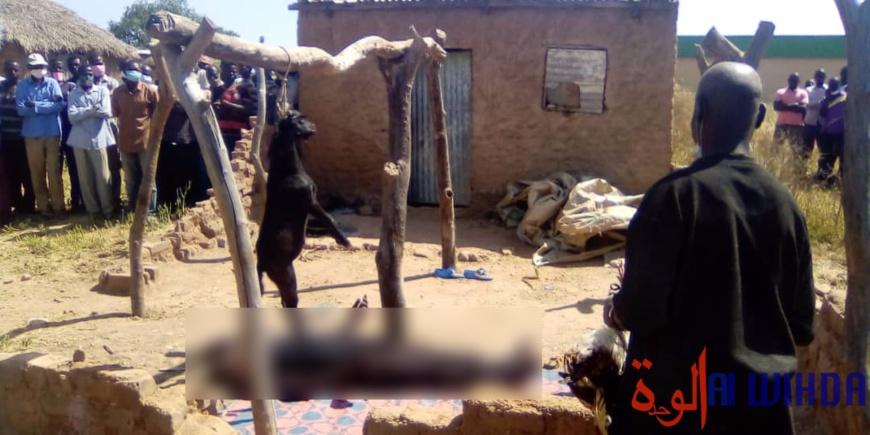 Tchad : un mort par pendaison à Pala. © Foka Mapagne/Alwihda Info