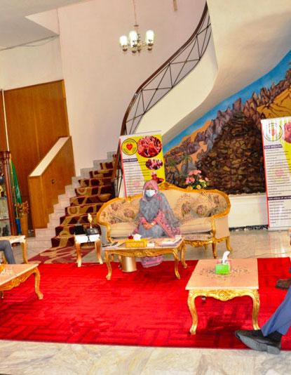 Tchad : une délégation d'investisseurs européens reçue par la Première Dame