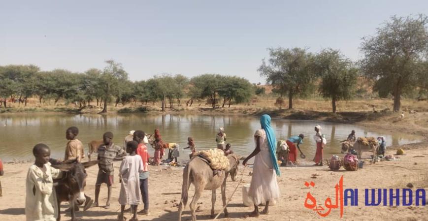 Tchad : le manque d'eau potable préoccupe les habitants de Koubeygou, au Sila
