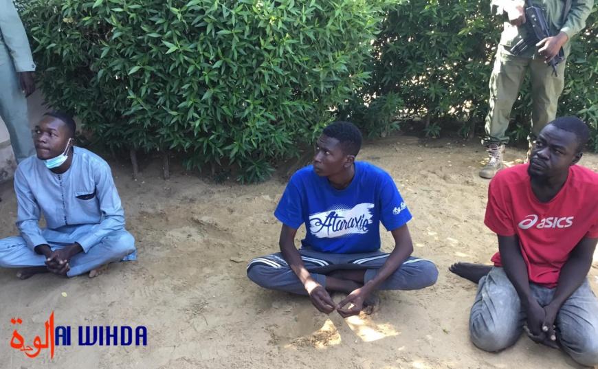 """Tchad : Kemba Didah et deux autres personnes """"mis à la disposition de la justice"""" (Police)"""
