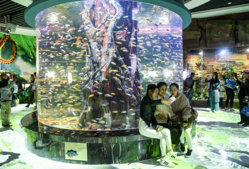 Tourists visit China's first freshwater aquarium for native species from the Mekong River in Xishuangbanna, southwest China's Yunnan province, Jan. 6. Photo by Li Ming/People's Daily Online
