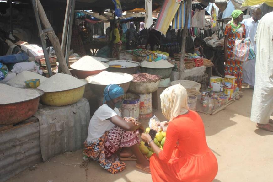Tchad-Niger-Nigeria-Cameroun : L'Allemagne accorde une aide additionnelle de 18 millions € au PAM