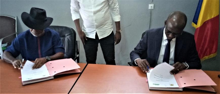 Tchad : l'ONG Songhai va appuyer le gouvernement dans le développement local