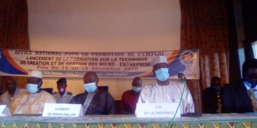 Tchad : l'ONAPE forme les promoteurs de l'emploi indépendant au Mayo Kebbi Ouest