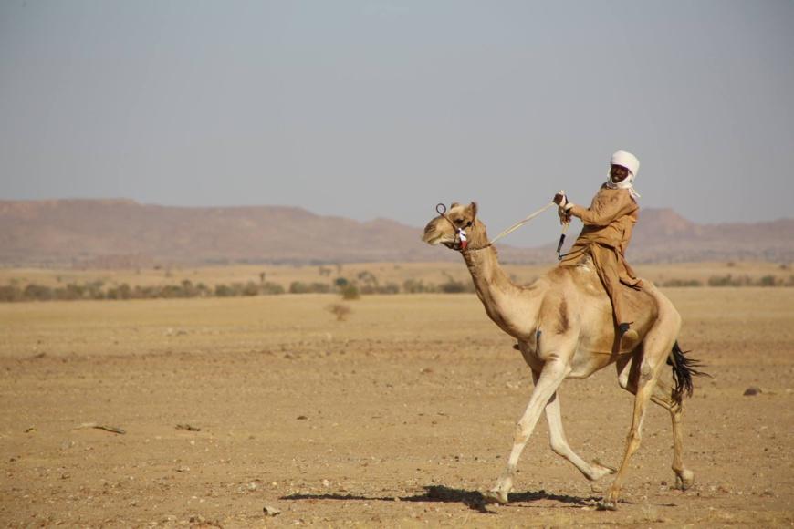 Tchad : Am-Djarass choisie pour abriter le Forum mondial du tourisme en 2021