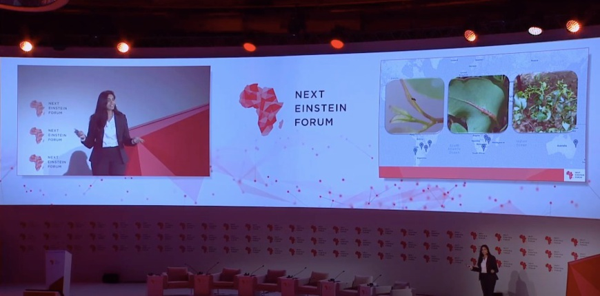 Le Next Einstein Forum annonce la promotion 2019-2021