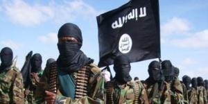 Mali: Les islamistes d'Ansar Dine accusent la France d'empoisonner des puits