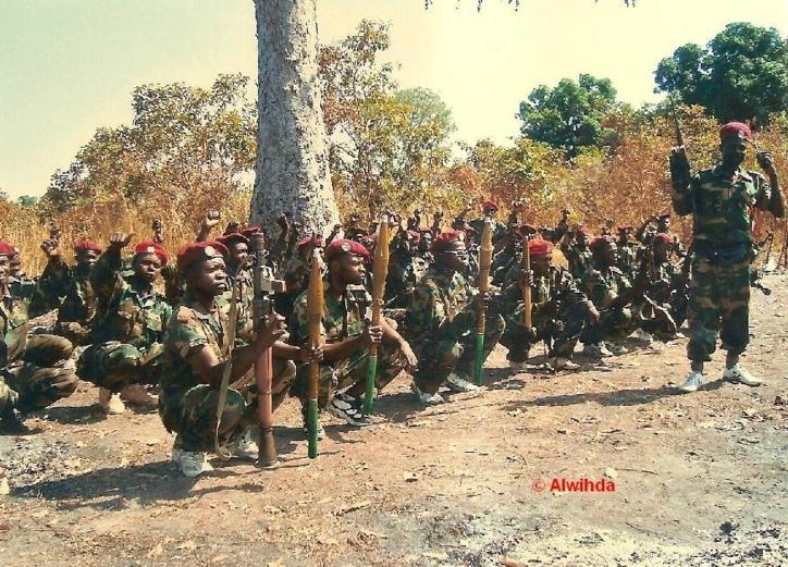 Des commandos rebelles du FDPC s'entraînent dans le Maki. Crédits photos : Alwihda