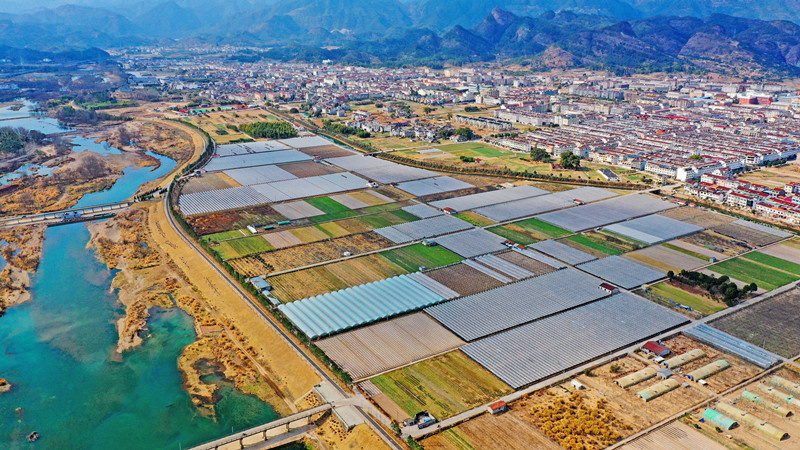 Photo taken on Feb. 1 shows magnificent vegetable and fruit planting bases in the countryside of Hengxi township, Taizhou city, east China's Zhejiang province. (Photo by Wang Huabin/People's Daily Online)