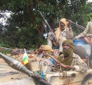 """Centrafrique : 35 morts en une journée, le FRD accuse les """"tchadiens de la Séléka"""""""