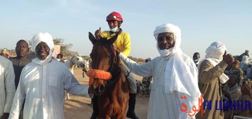 """Tchad : """"La caravane des éleveurs"""" lance une compétition hippique"""