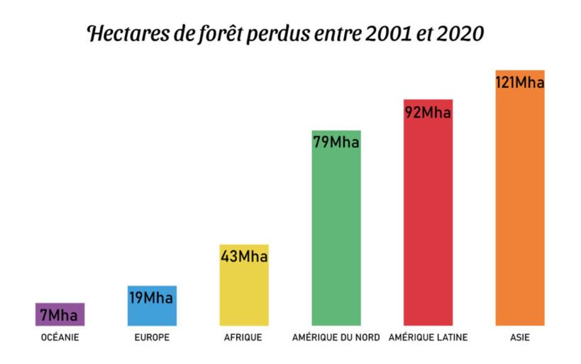 Perte d'arbres régionaux par continent de 2001 à 2020, données Global Forest Watch - par Gilles Berdugo.