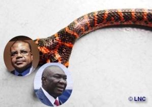 Centrafrique : Tiangaye VS Djotodia du sable dans le couscous