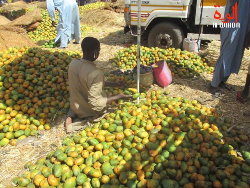 Tchad : vente des fruits, des conditions d'hygiène qui laissent à désirer