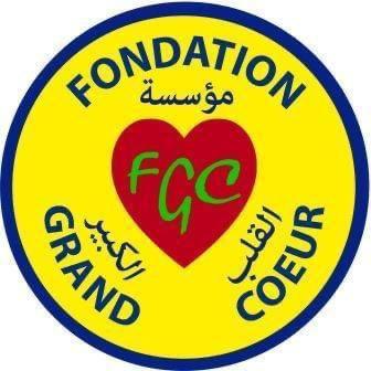 Tchad : la FGC devient Fondation Idriss Deby Itno
