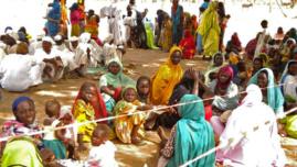 Tchad : 5,5 millions de personnes dans le besoin humanitaire d'urgence