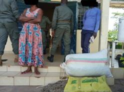 Cameroun : Deux personnes interpellées avec 70kg d'écailles de pangolin à Mbalmayo