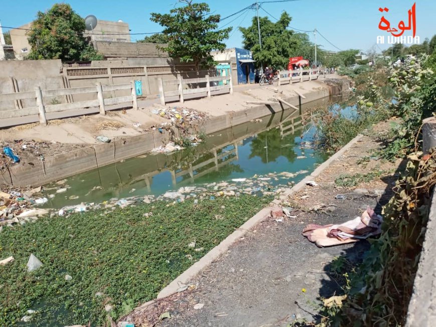 Tchad : après la pluie, les bassins de rétention dégagent des odeurs nauséabondes
