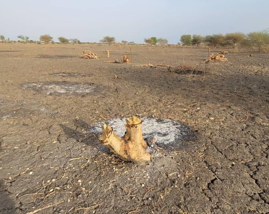 Tchad : une réflexion et un diagnostic sur la gouvernance environnementale en perspective. © Min.Environnement